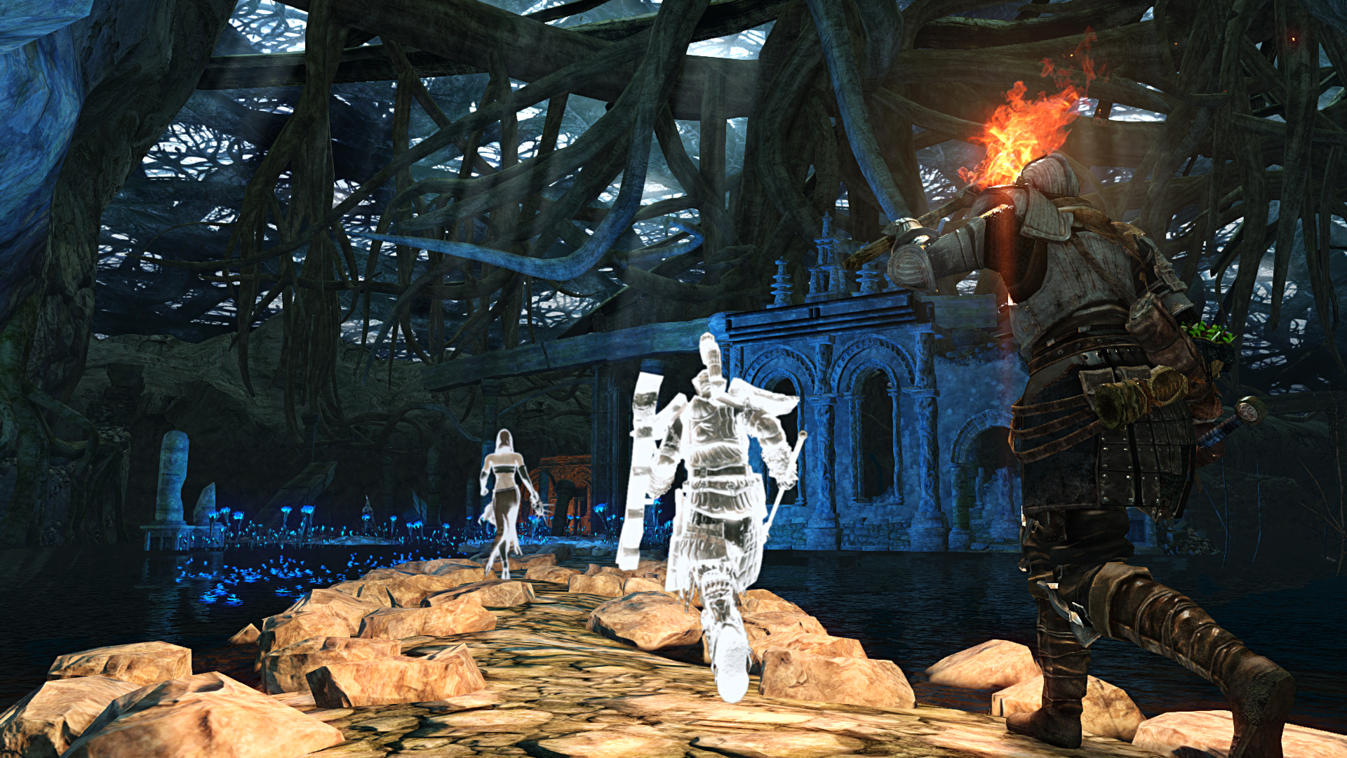 Take A Look At Dark Souls II's Scholar of the First Sin