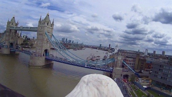 Eagle-Cam-Tower-Bridge