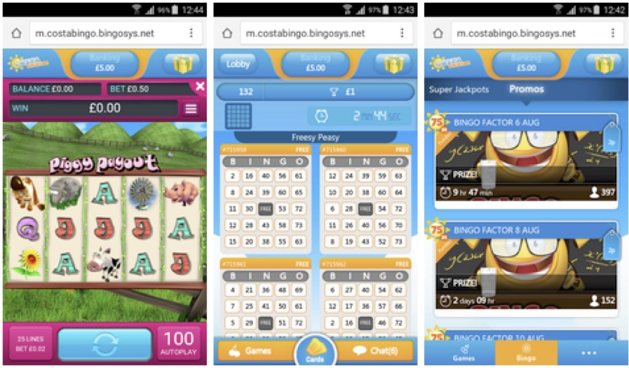 Guide to the Best Mobile Bingo Games
