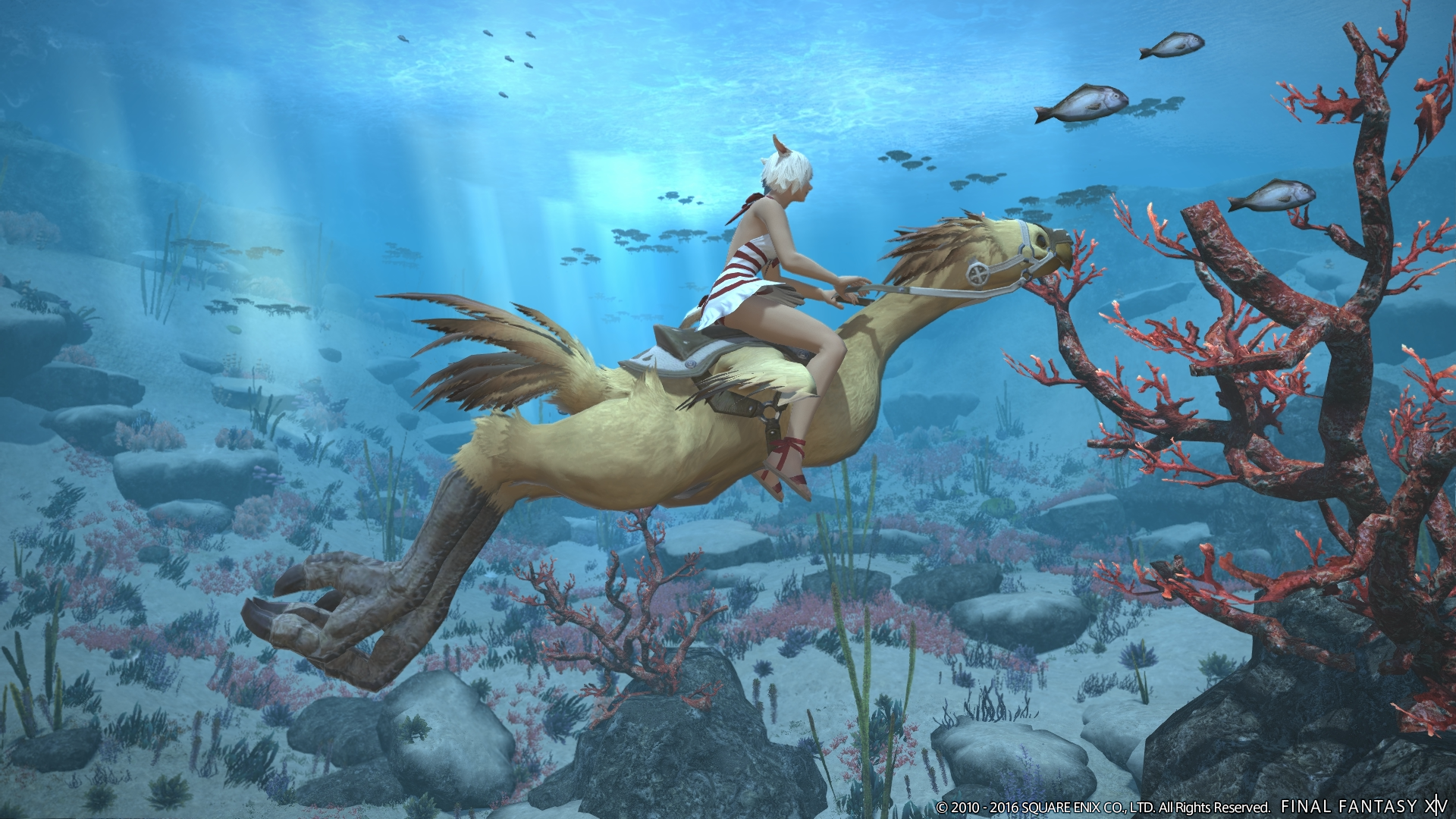 New Final Fantasy XIV Expansion Coming This Summer