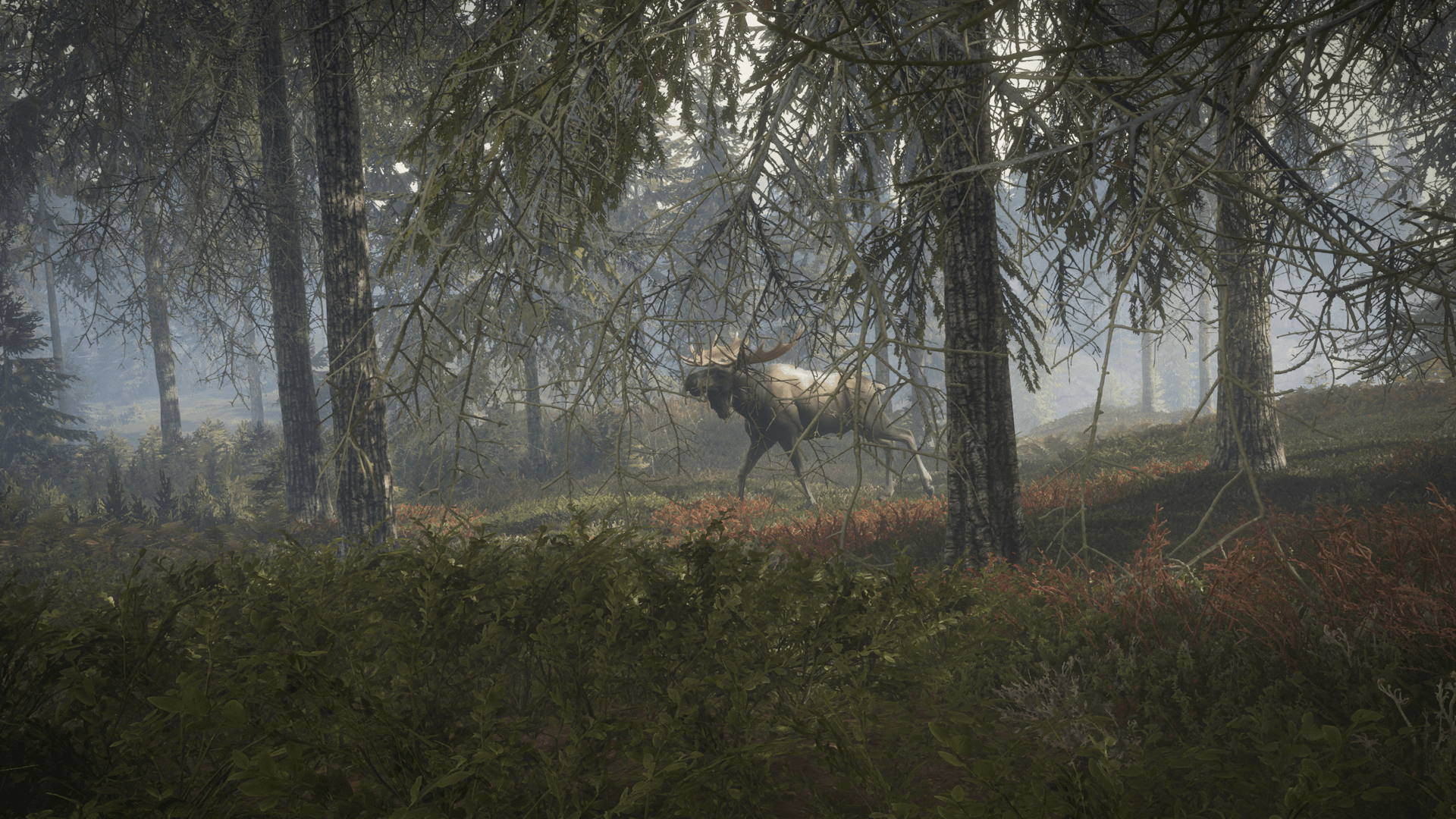 Get To Hunting With theHunter: Call Of The Wild