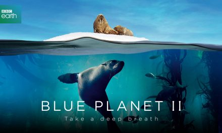 BBC Earth Launches Californian Pacific Coast VR Experience